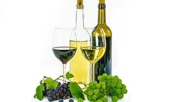 Dobre wina z Polski