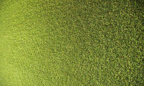 Ile kosztuje sztuczna trawa w rolkach?