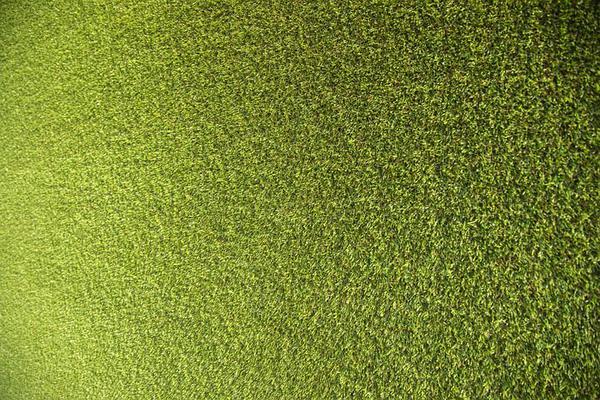 sztuczna trawa cena